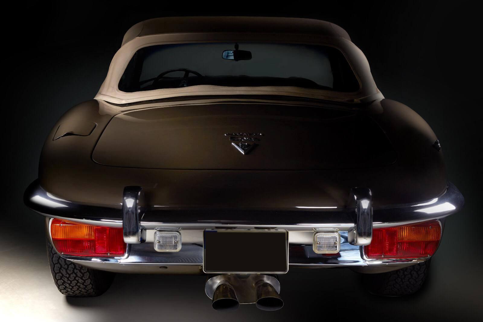 Jaguar1 (1)