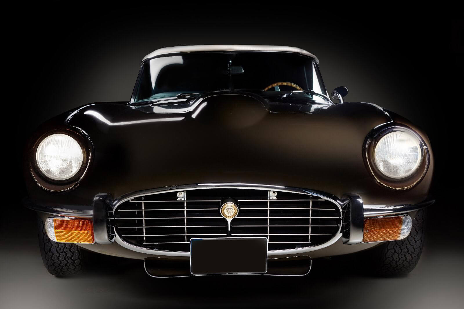 Jaguar2 (1)